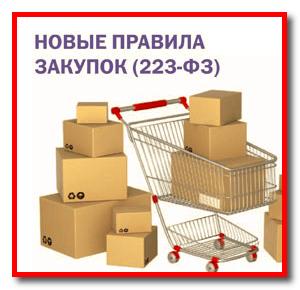 Особенности закупок по 223-ФЗ